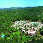 carmel_forest_hotel